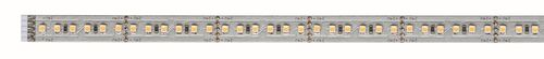 Striscia LED 39 x 1M 3.12W luce fredda 273 lumen X3 Paulmann B5595 Paulmann