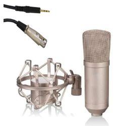 Microfono a condensatore con diaframma largo MIC017