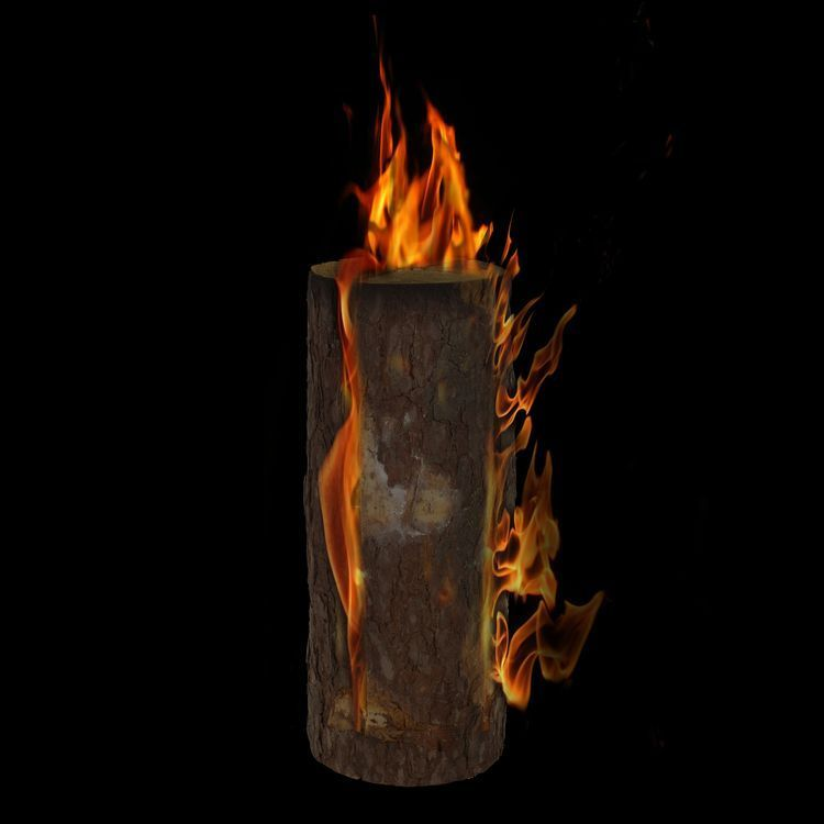 Wooden torch H 50cm with wick ED5252