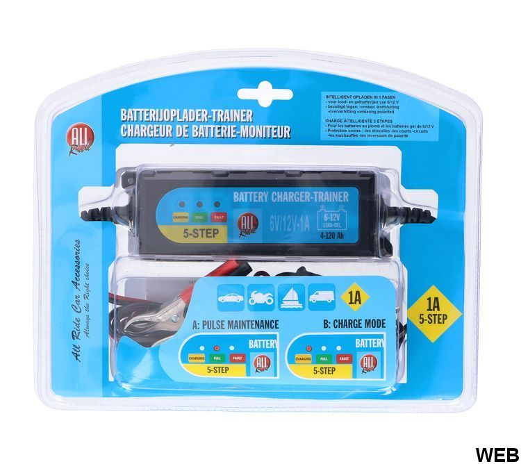 All Ride charger and trainer for cars / motorbikes / boats / trucks ED766 All Ride